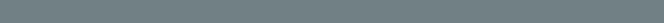 Subhead-Gray Bar Thick